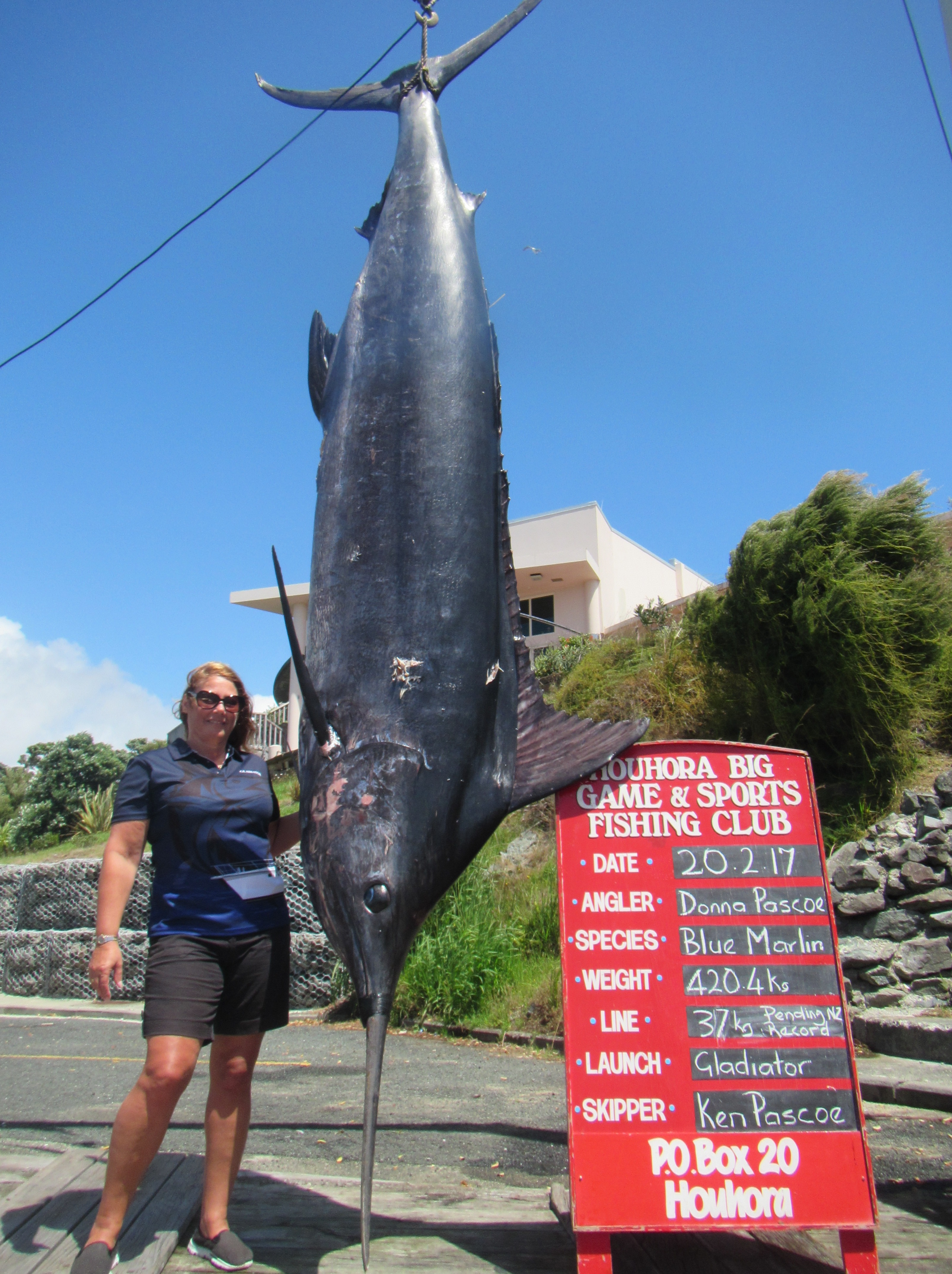 e9e0a87319c Angler breaks own record from a year earlier with 420kg blue marlin ...