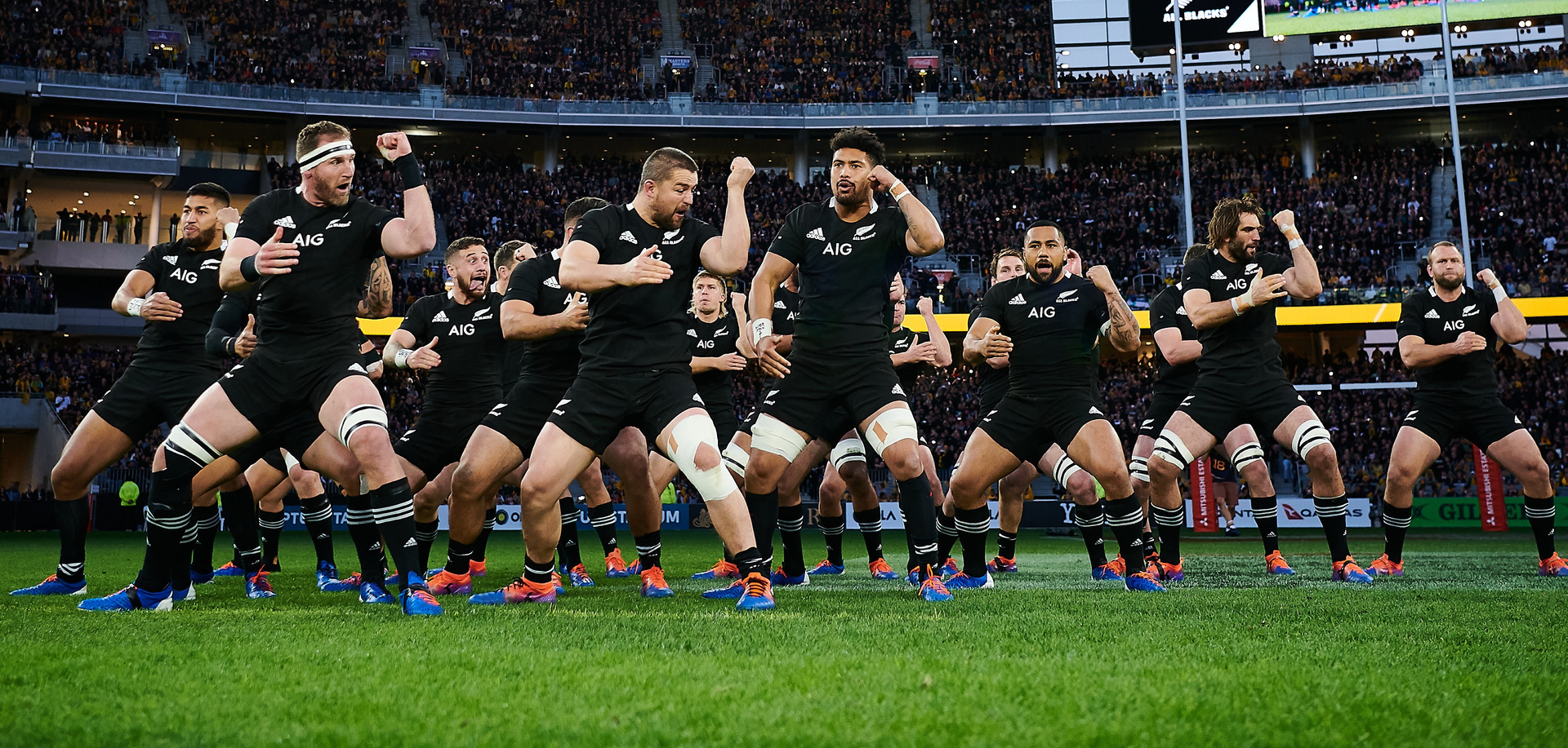New 'Spidercam' channel for All Blacks test
