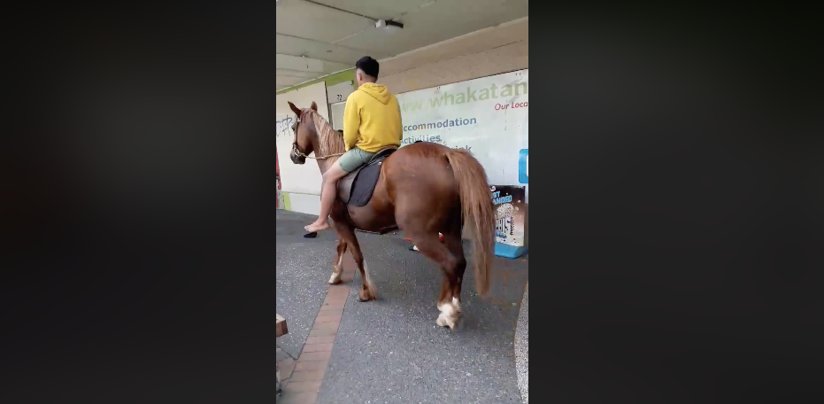 'Meanwhile in Whakatane': Video shows man casually riding horse around town in Kopeopeo