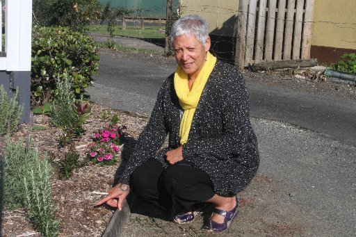 Far North Community Hospice disheartened by plant theft