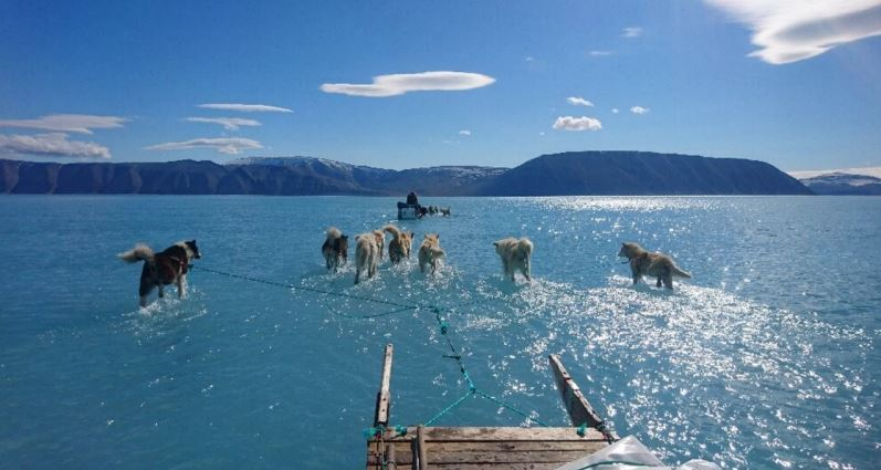 The 'scary' reality behind photo of pristine sea in Greenland