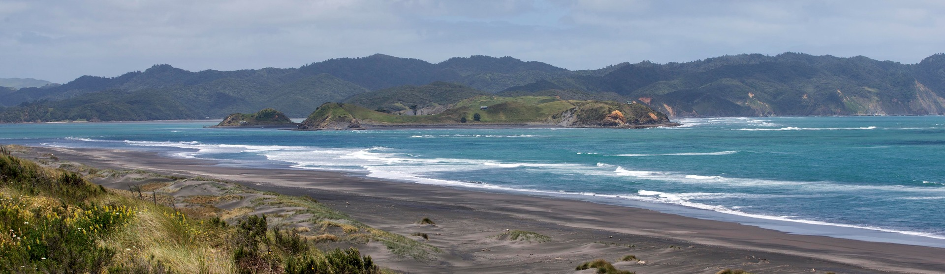 MPI issues shellfish warning - NZ Herald