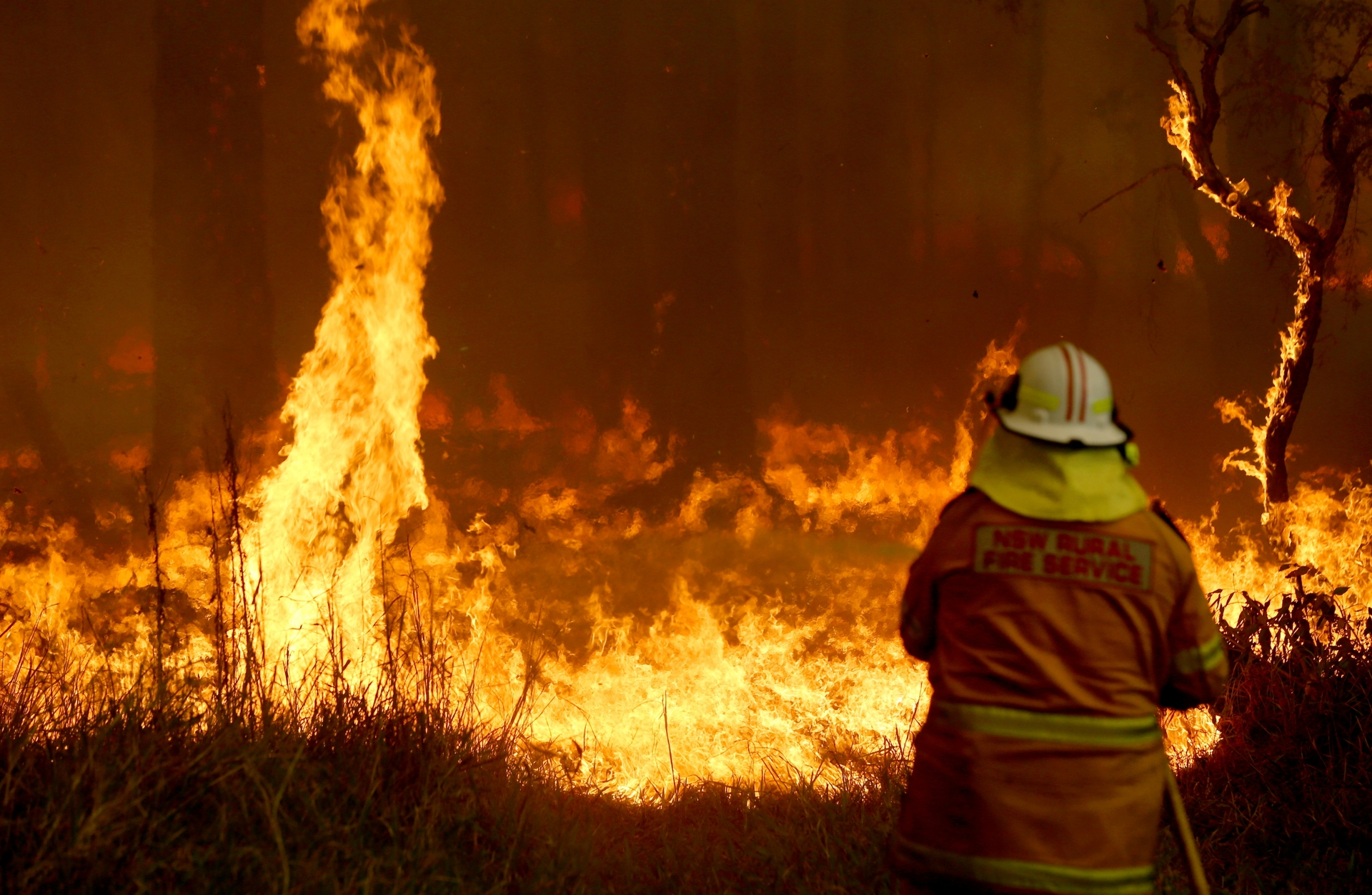 Ferocious forecasts: Australians on notice for 'catastrophic' fire danger