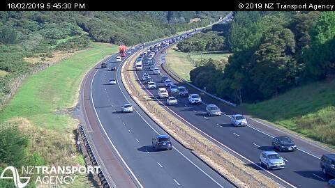 Unruly sheep causing delays for commuters on Auckland's Northern Motorway