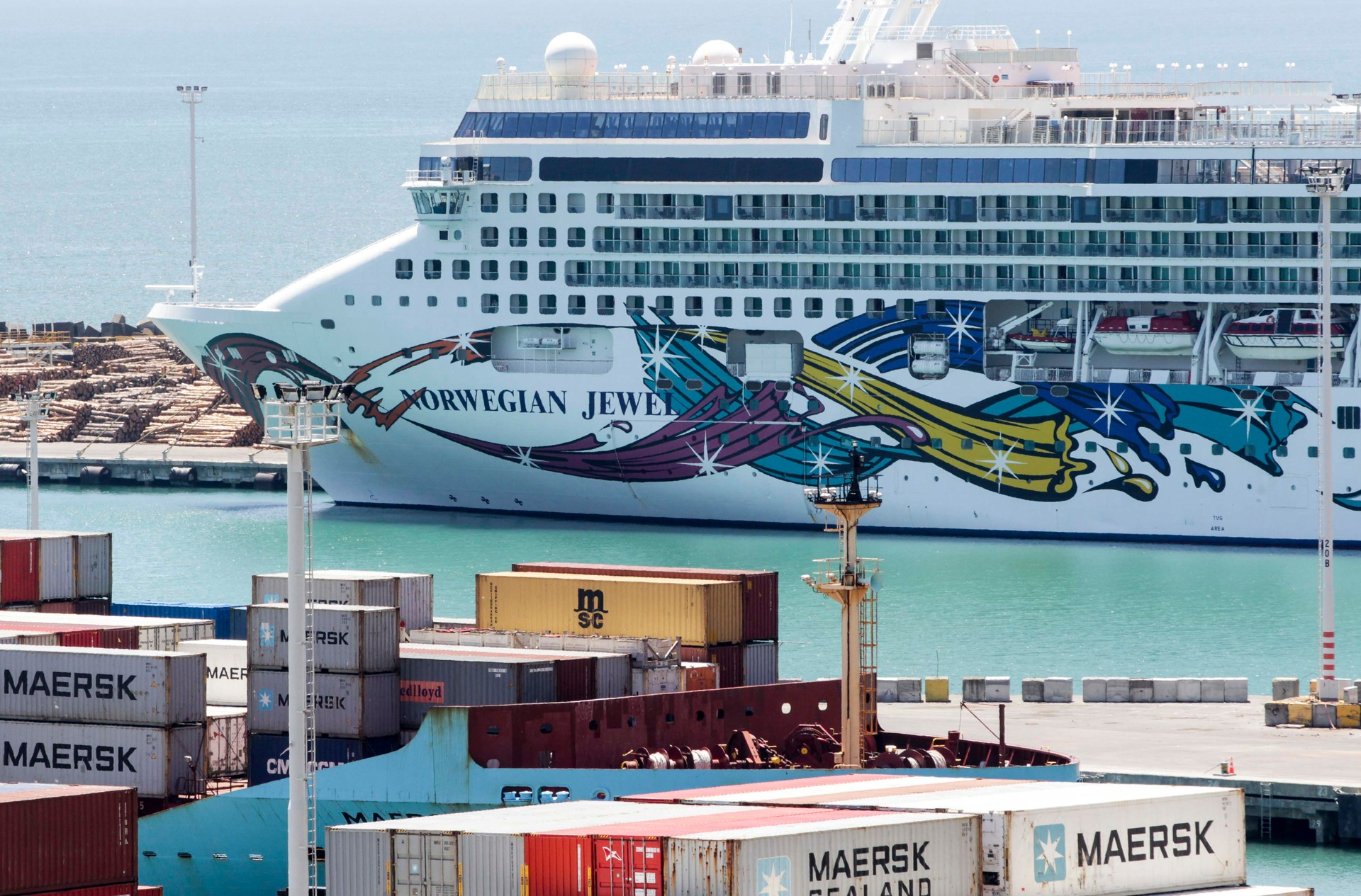Cruise ship passenger missing in NZ after going overboard