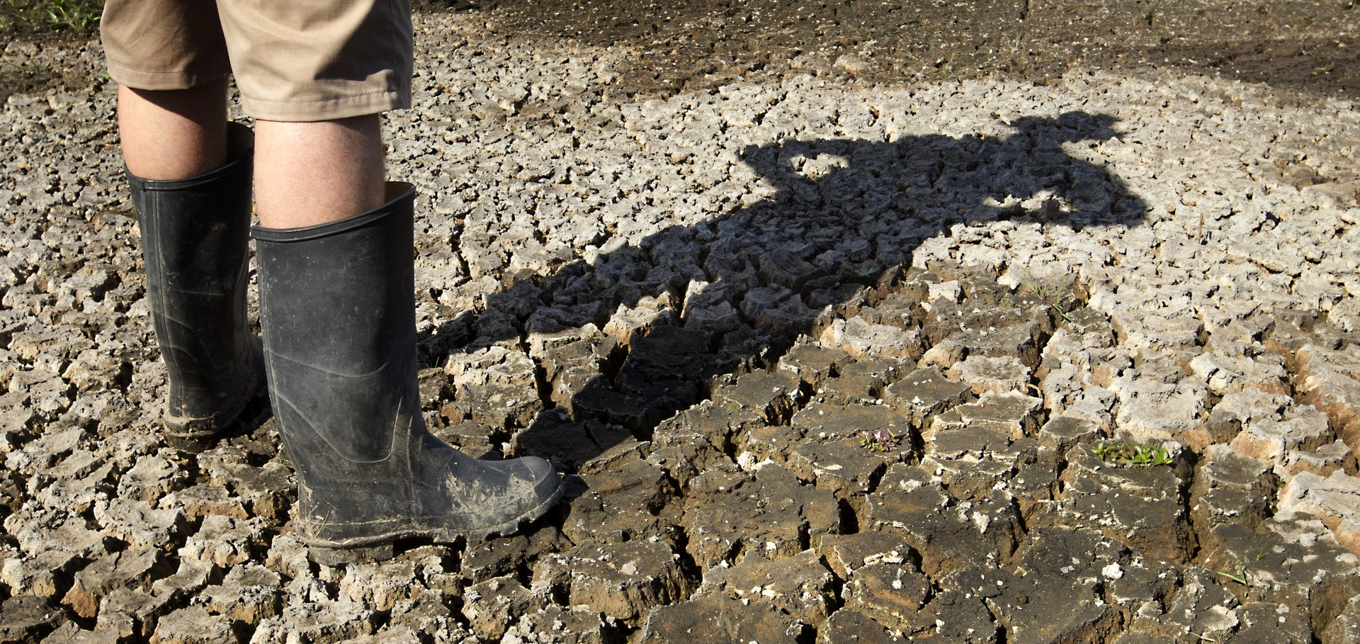 'Widespread extreme dryness' - why drought has come to NZ
