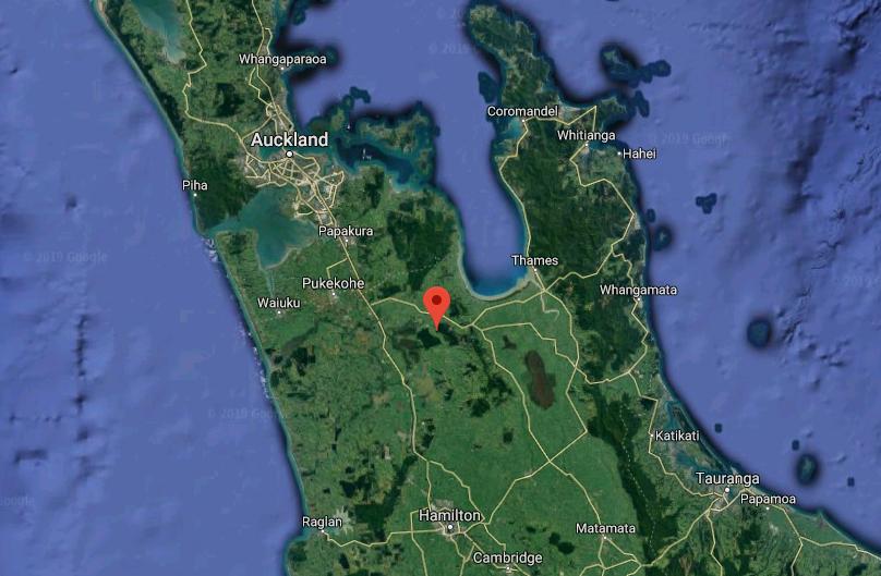 One dead in crash in Maramarua Forest, Waikato