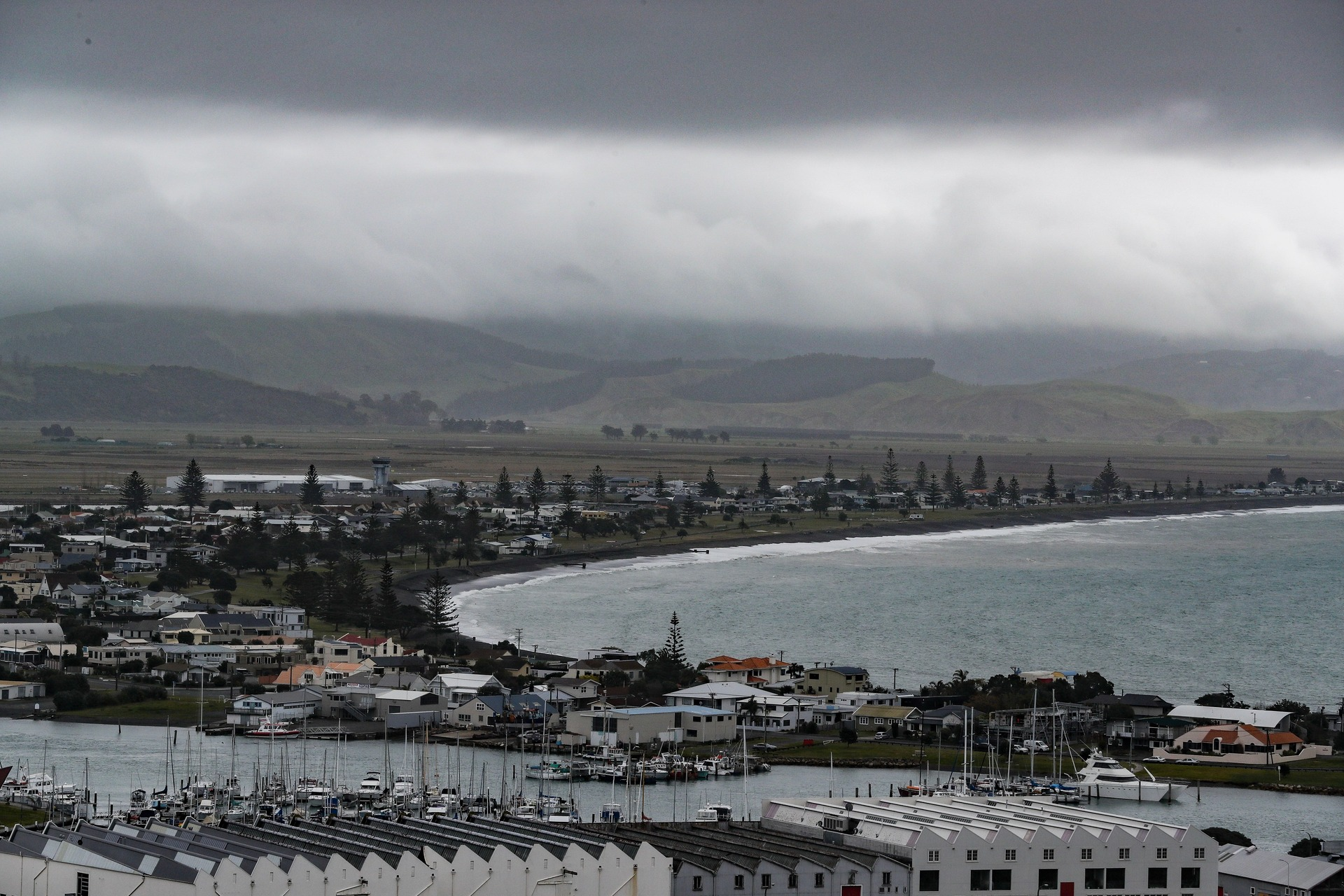 'Severe gale': MetService issues strong wind watch for Hawke's Bay