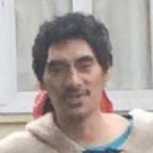 Dunedin man who beat cat to death sentenced to community work