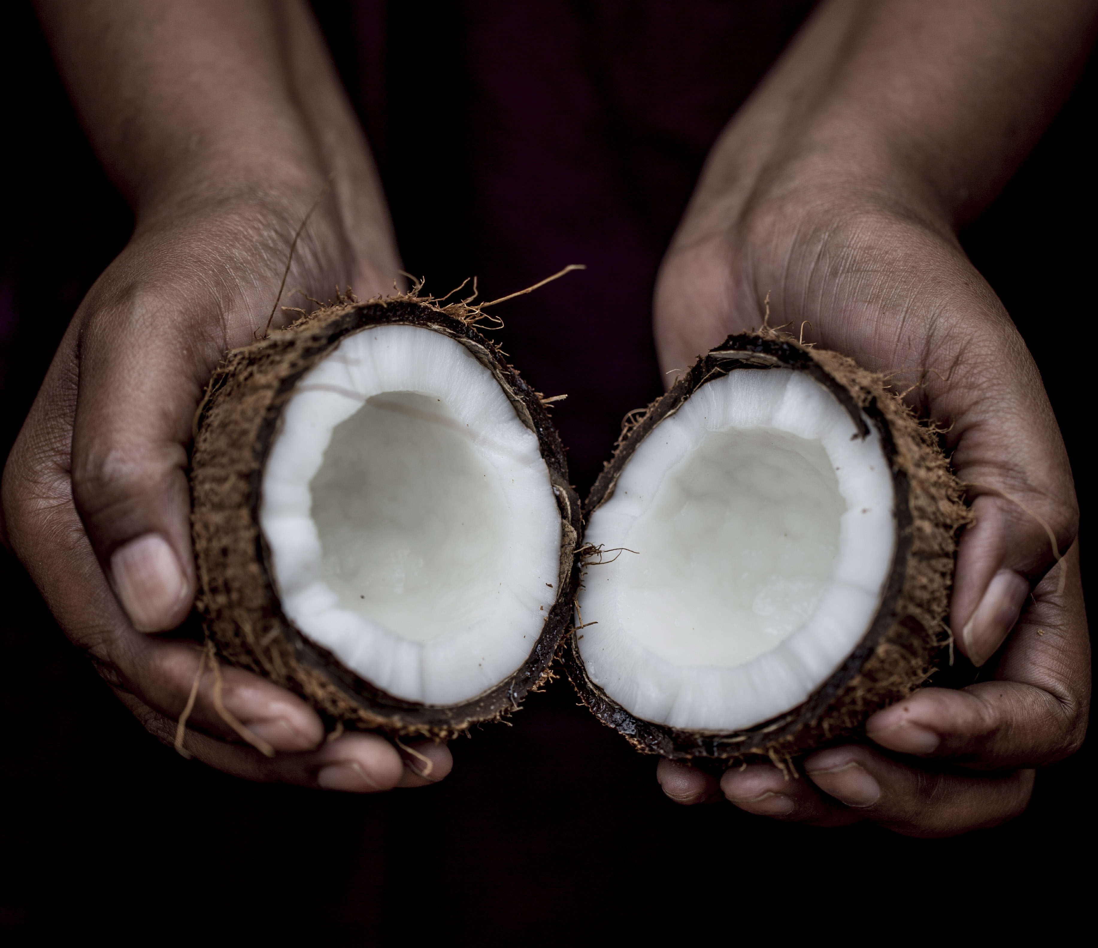 Rosemary Stanton: Five claims about coconut oil debunked - NZ Herald
