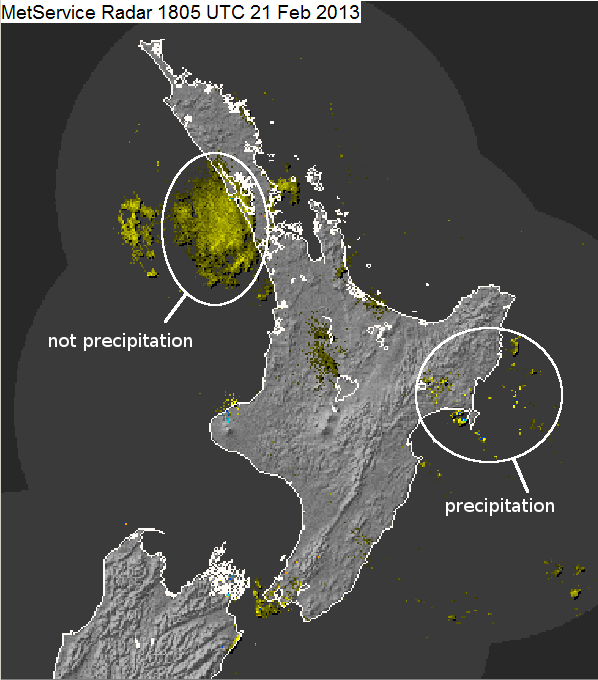 Rain radar activity could be 'swarm of insects' - NZ Herald