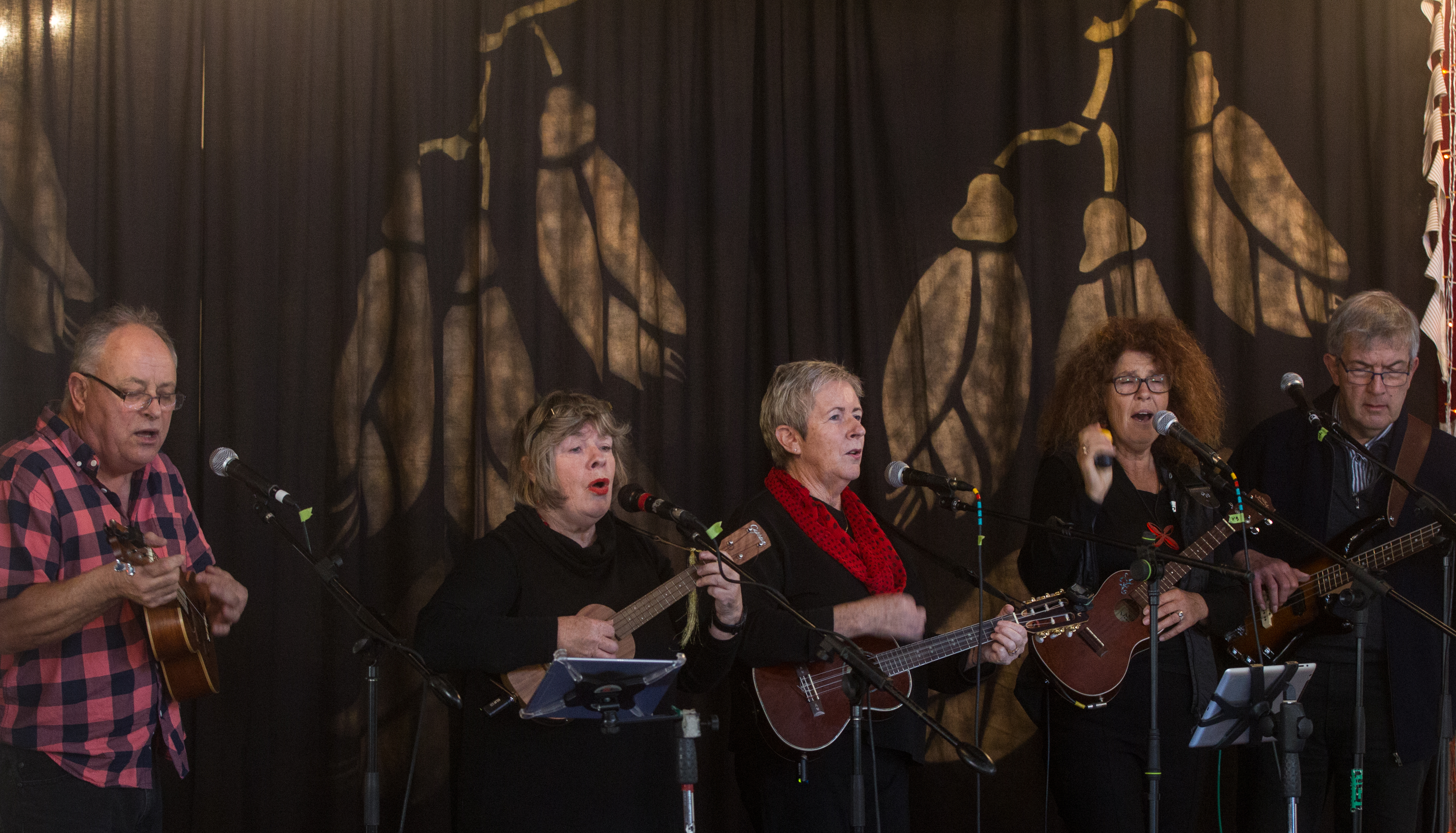 Music Month provides a stage for Rotorua musicians of all