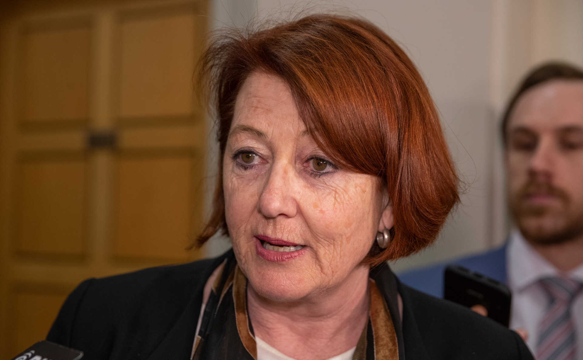 National MP Maggie Barry claims she was 'misrepresented' by Assistant Speaker Ruth Dyson