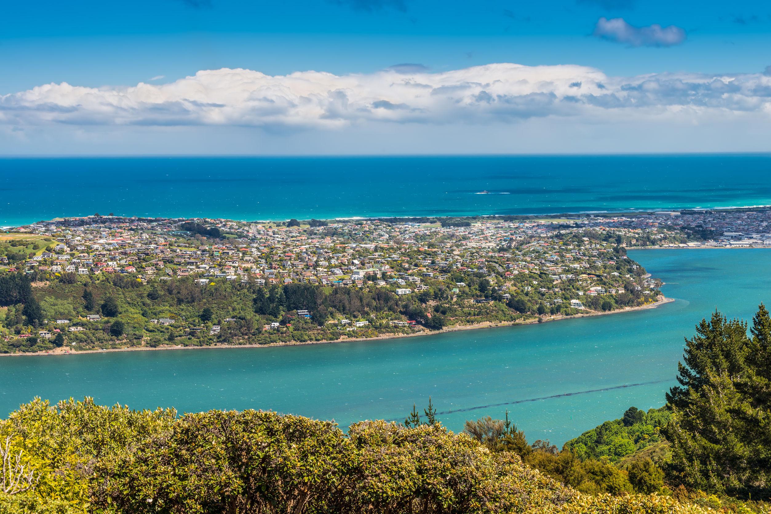 Dunedin: Secrets of the South