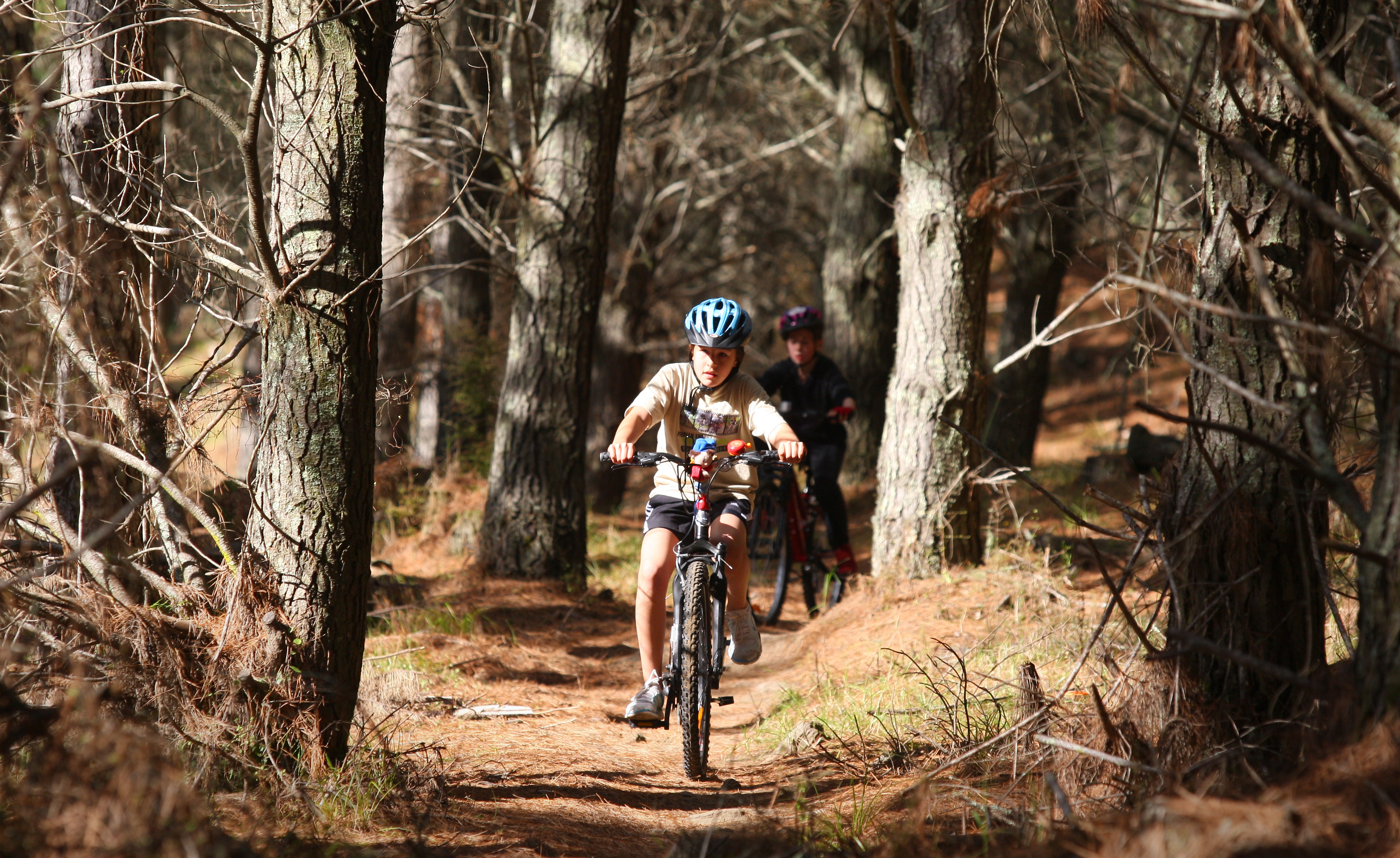 bfcb4c38870 Auckland's best places to mountain bike - NZ Herald