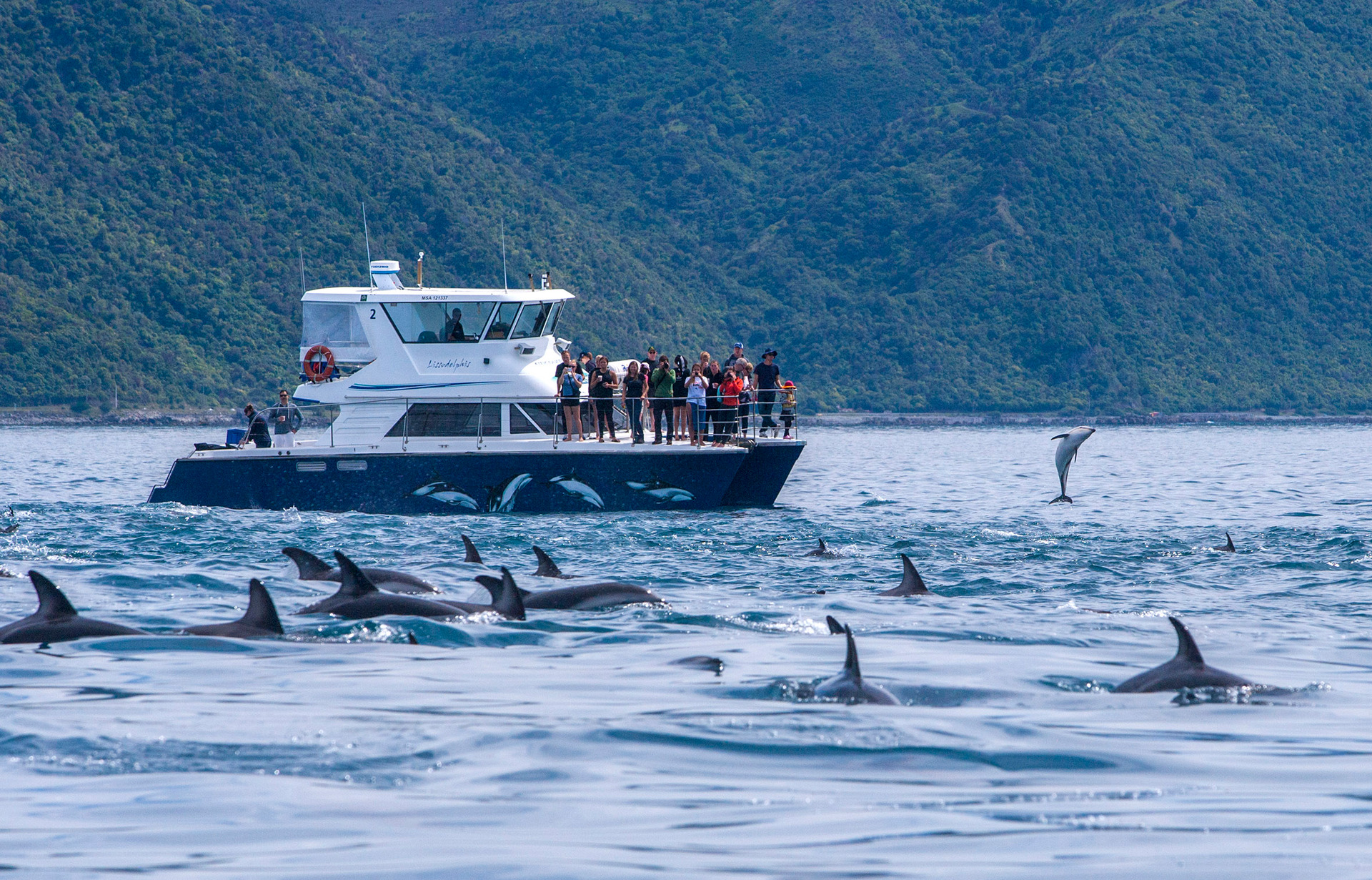 Tourism New Zealand says campaign to promote shoulder seasons working