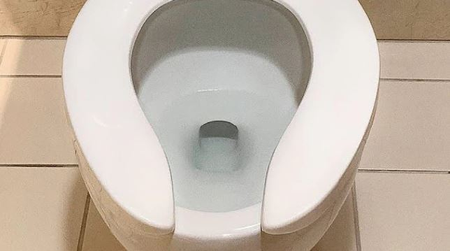 Gross reason public toilets look different