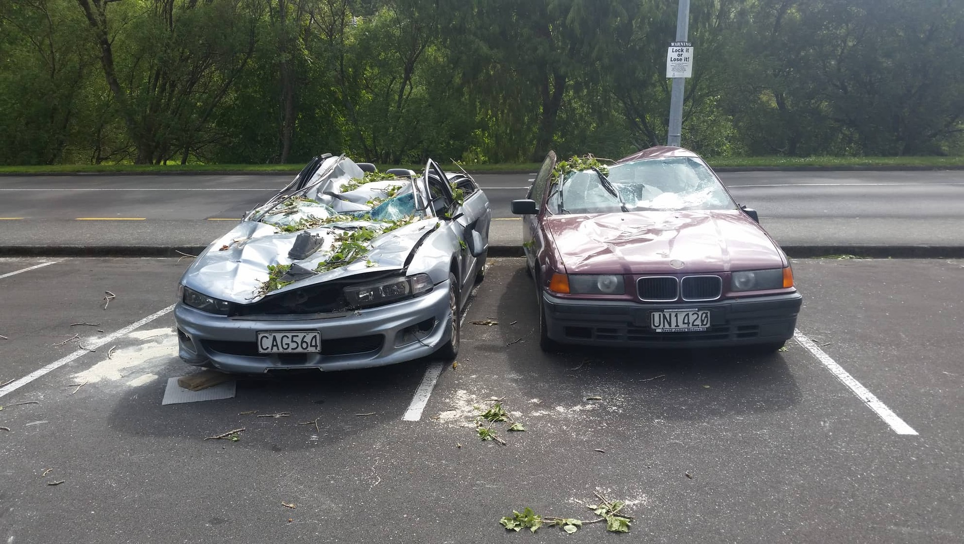 Tree crushes students' cars at Massey University, Palmerston North