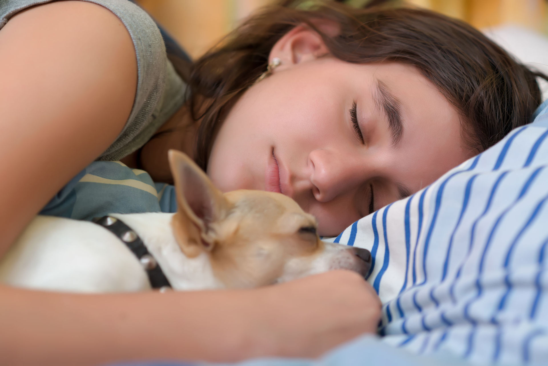 The surprising benefits of sleeping next to your dog
