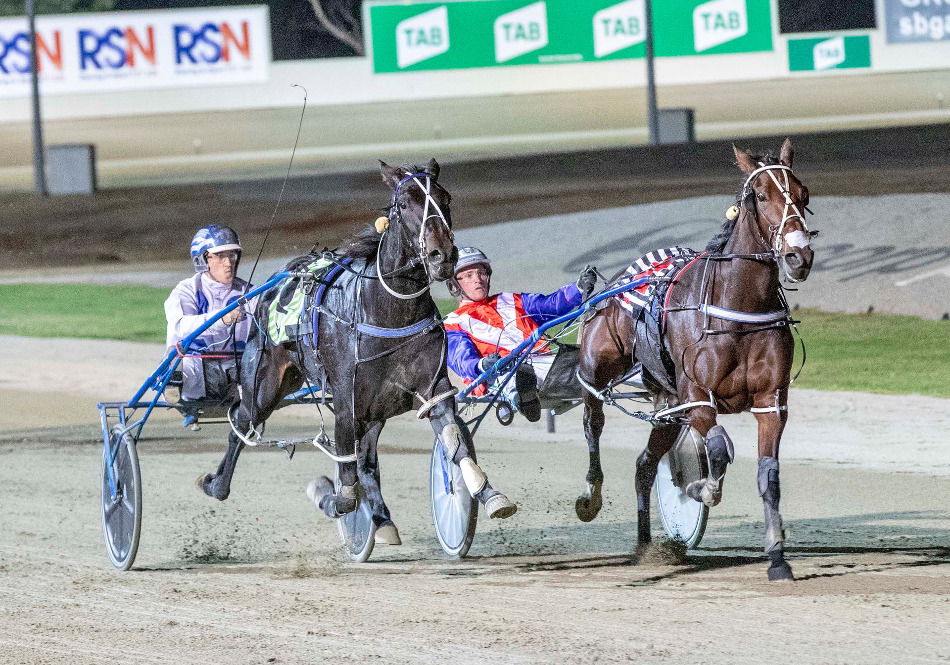 Racing: Puzzle for punters at Alexandra Park