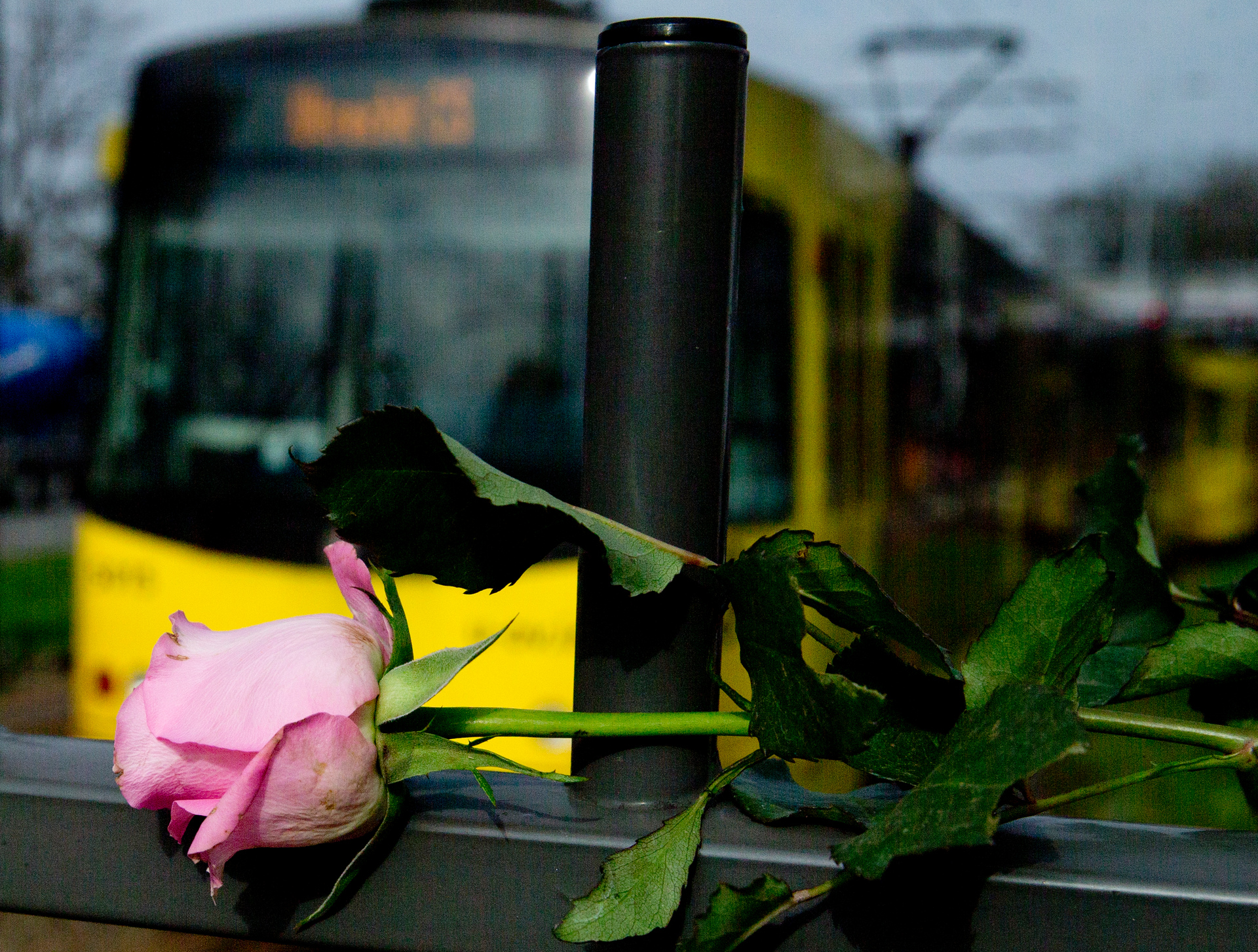 Dutch tram shooting suspect confesses to attack that killed three people