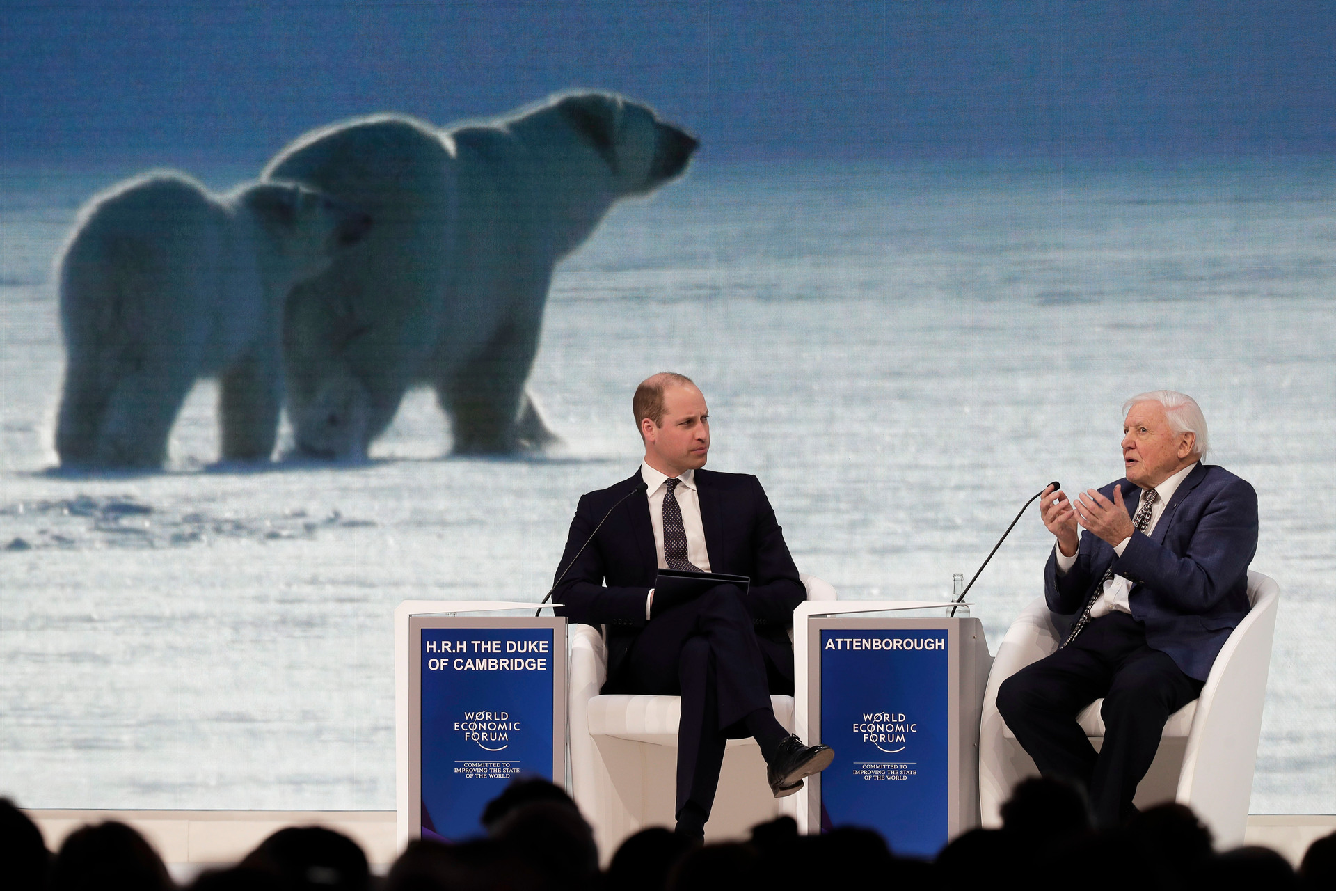 David Attenborough's plea to Davos: 'The mechanisms that we have for destruction are so wholesale and so frightening'