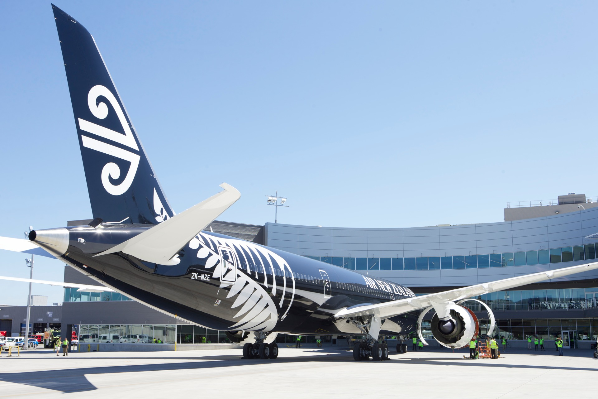 Air New Zealand exploring gender options for 'non-binary' passengers