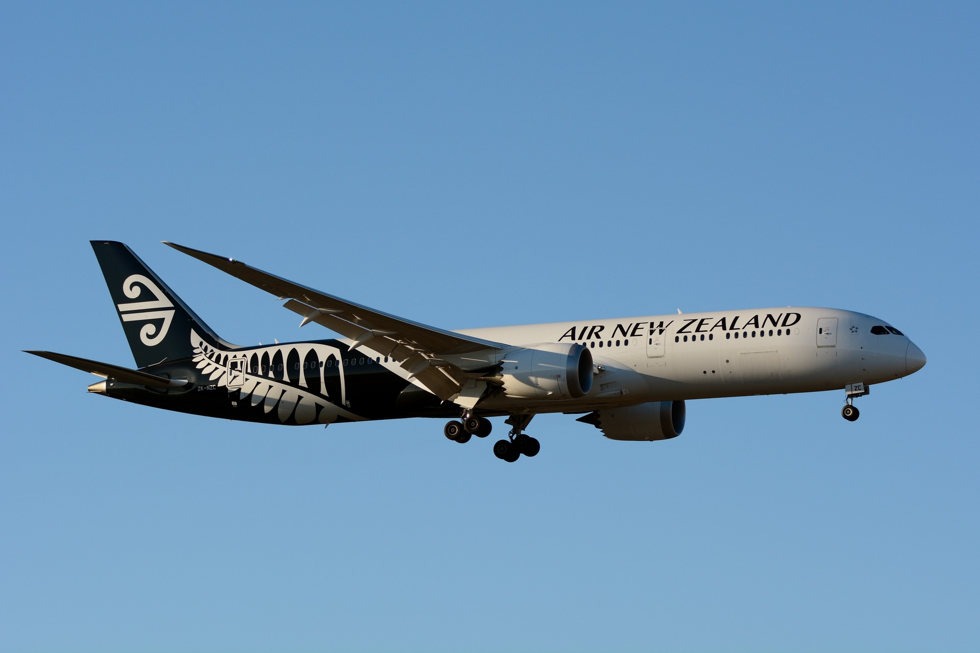 Woman booted from Air New Zealand flight after refusing to watch safety video