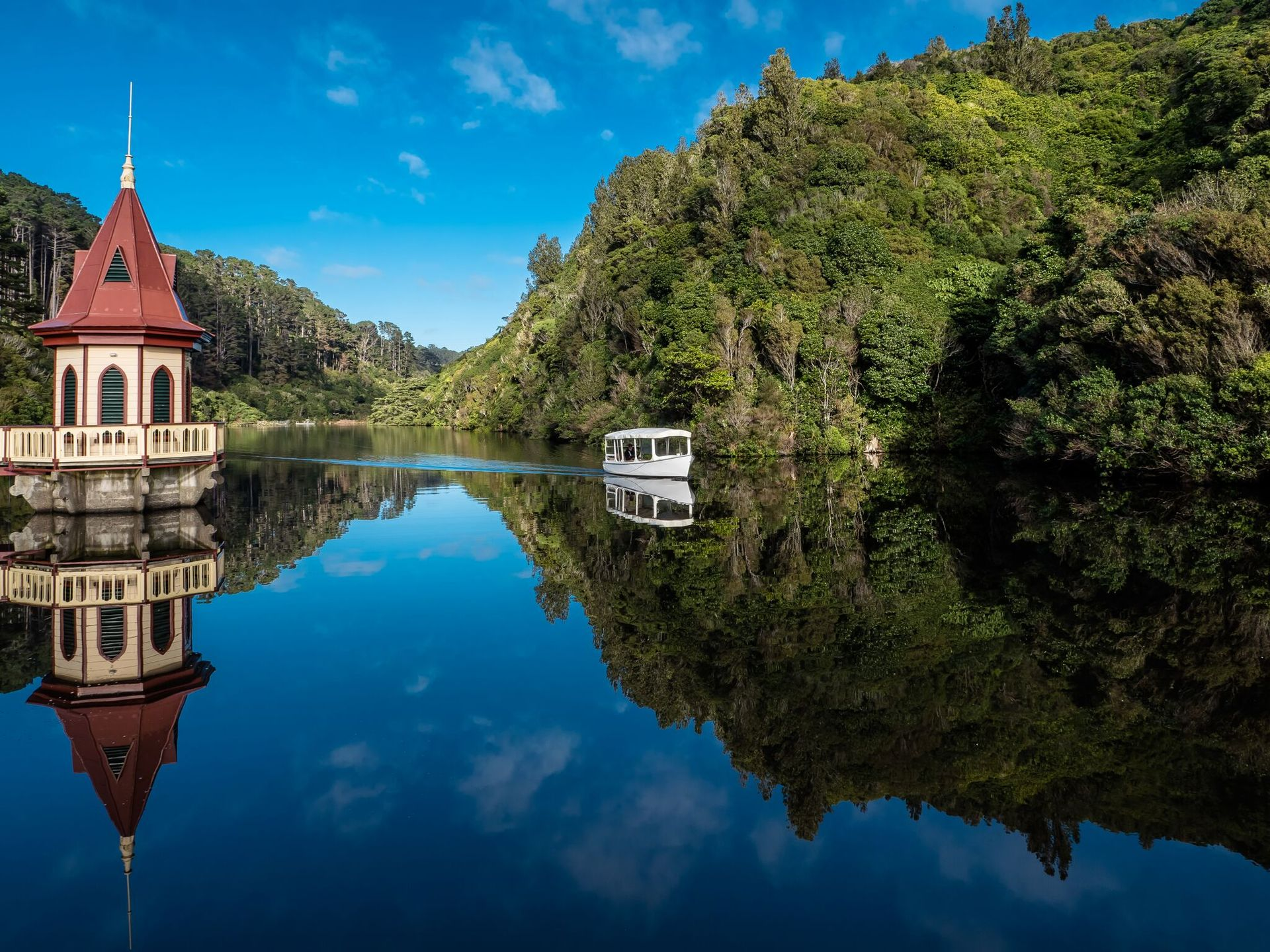 Zealandia ecosanctuary named one of TIME's 100 Greatest Places of 2019