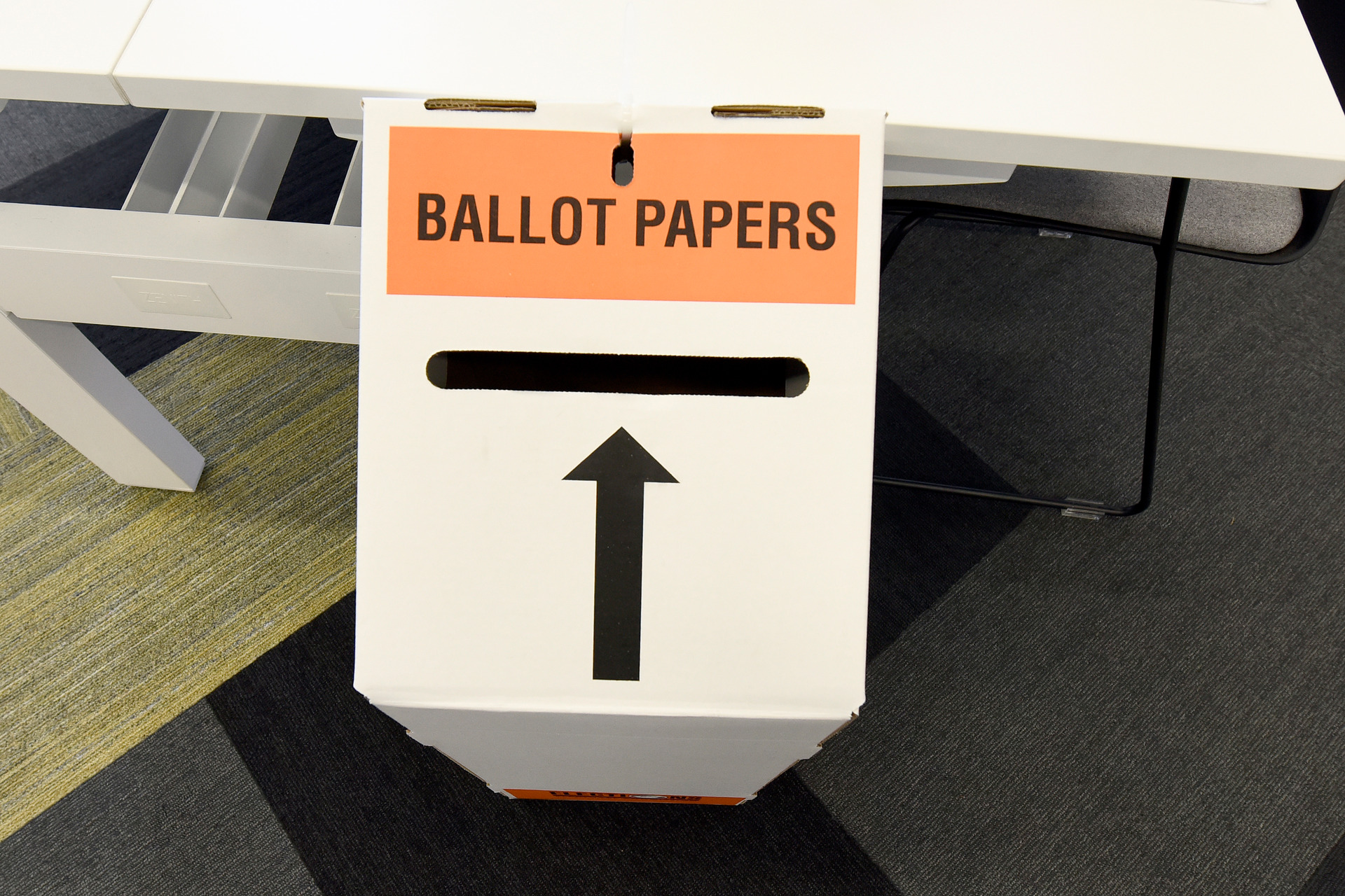 John Roughan: Why I will be casting a vote next week