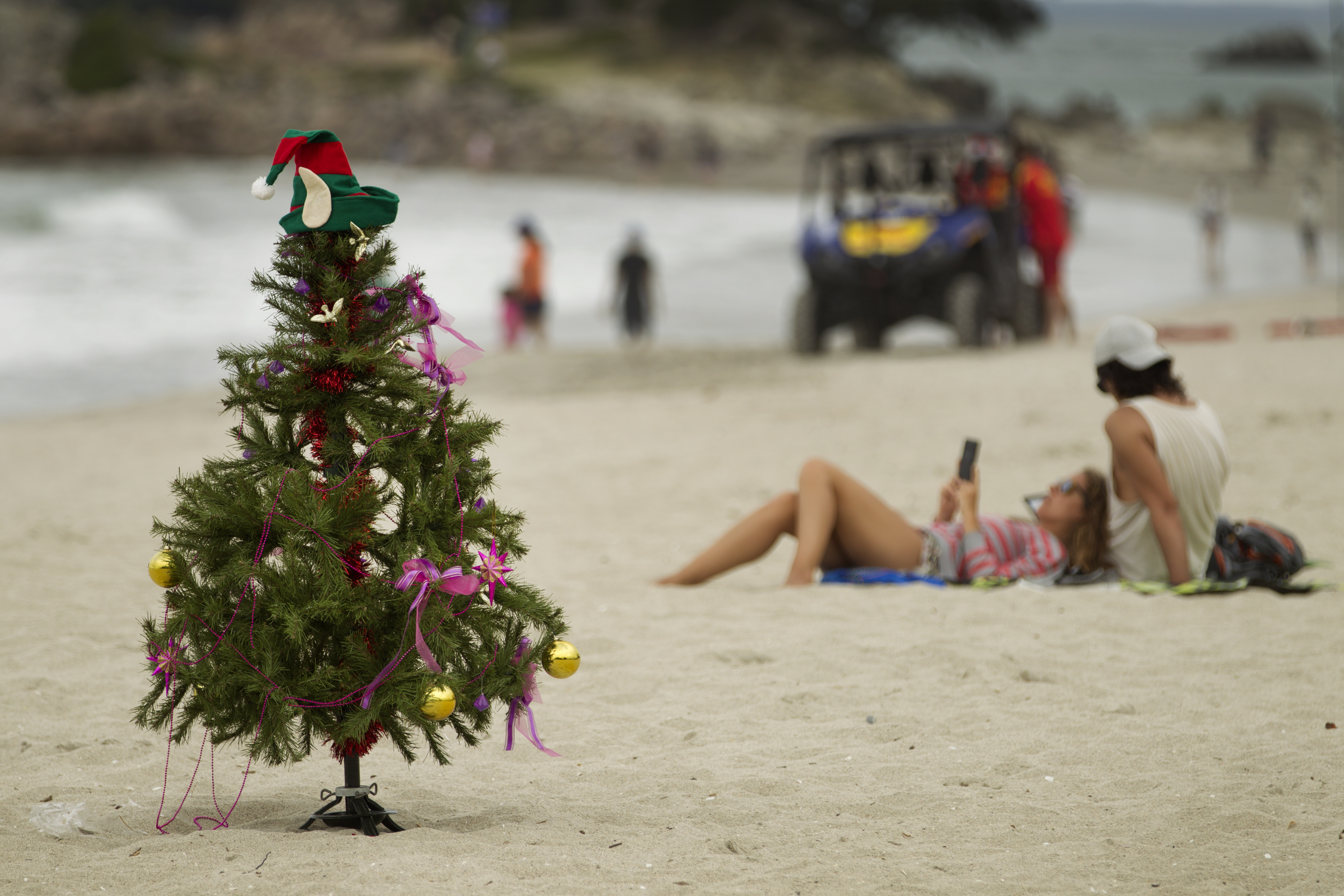 Lizzie Marvelly: Is it too early to put up the Christmas tree? - NZ ...