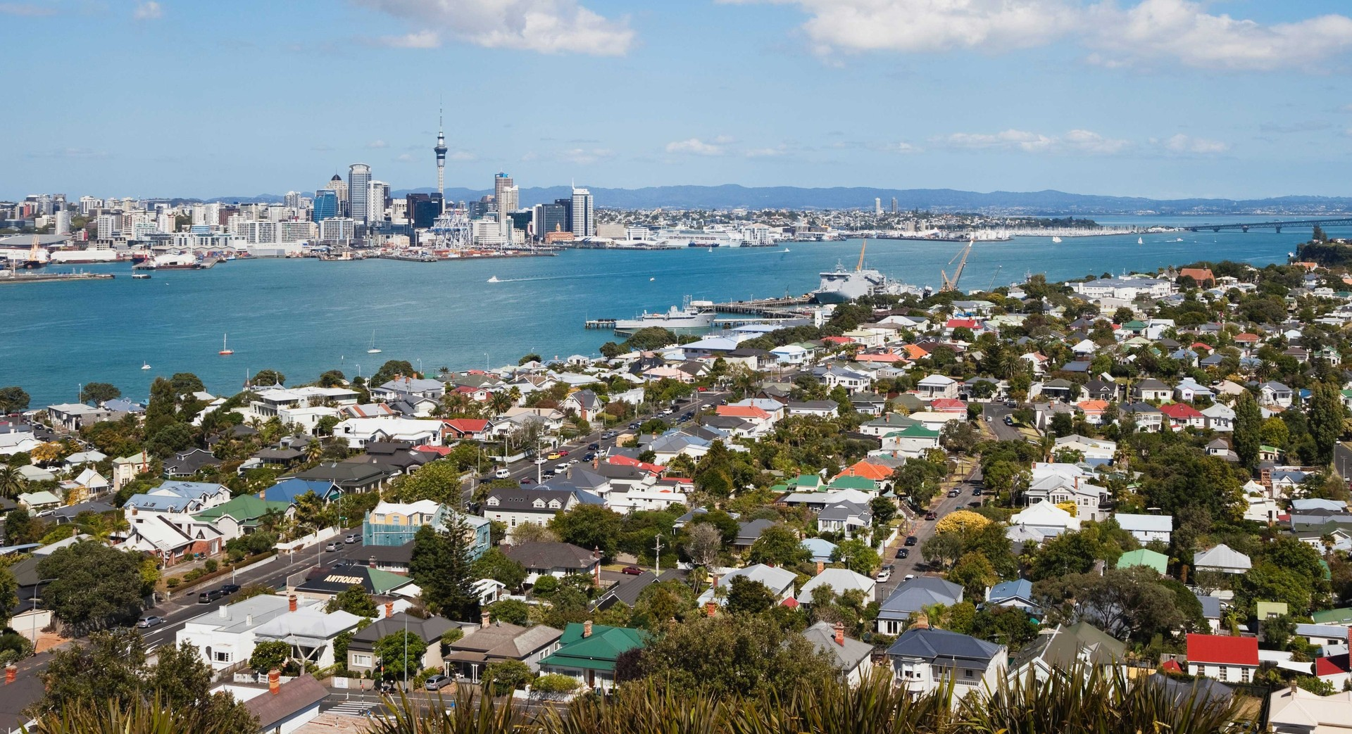 Auckland property market shows signs of life