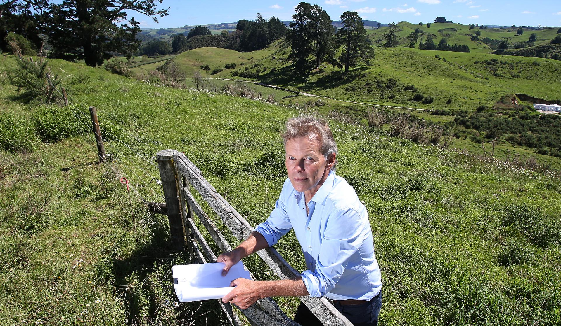 Tauranga a 'city in crisis' as report reveals major housing shortfall