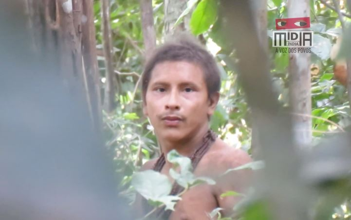 Footage captured of untouched Amazon tribe as loggers close in