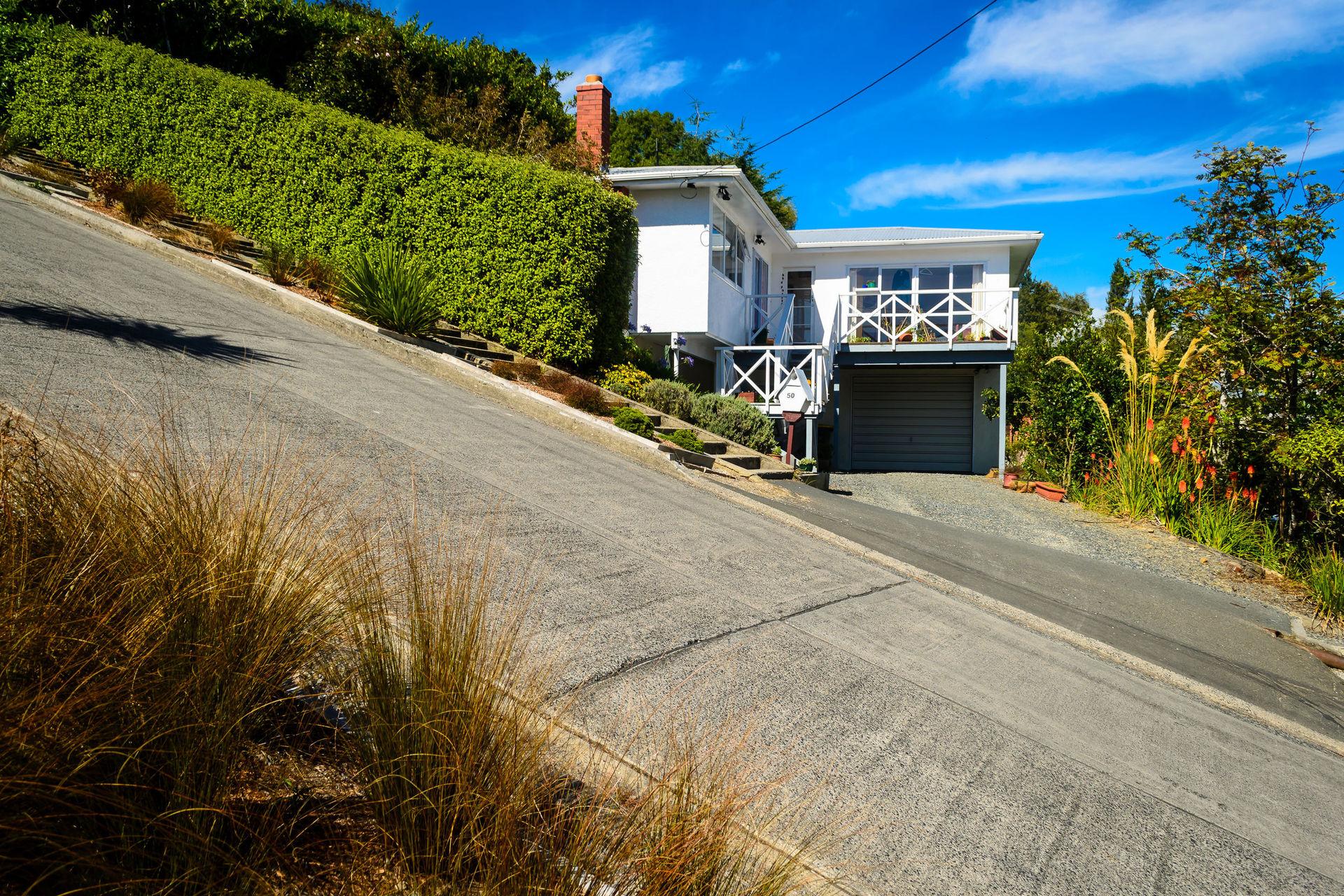 Dunedin Surveyor believes Baldwin St is steeper
