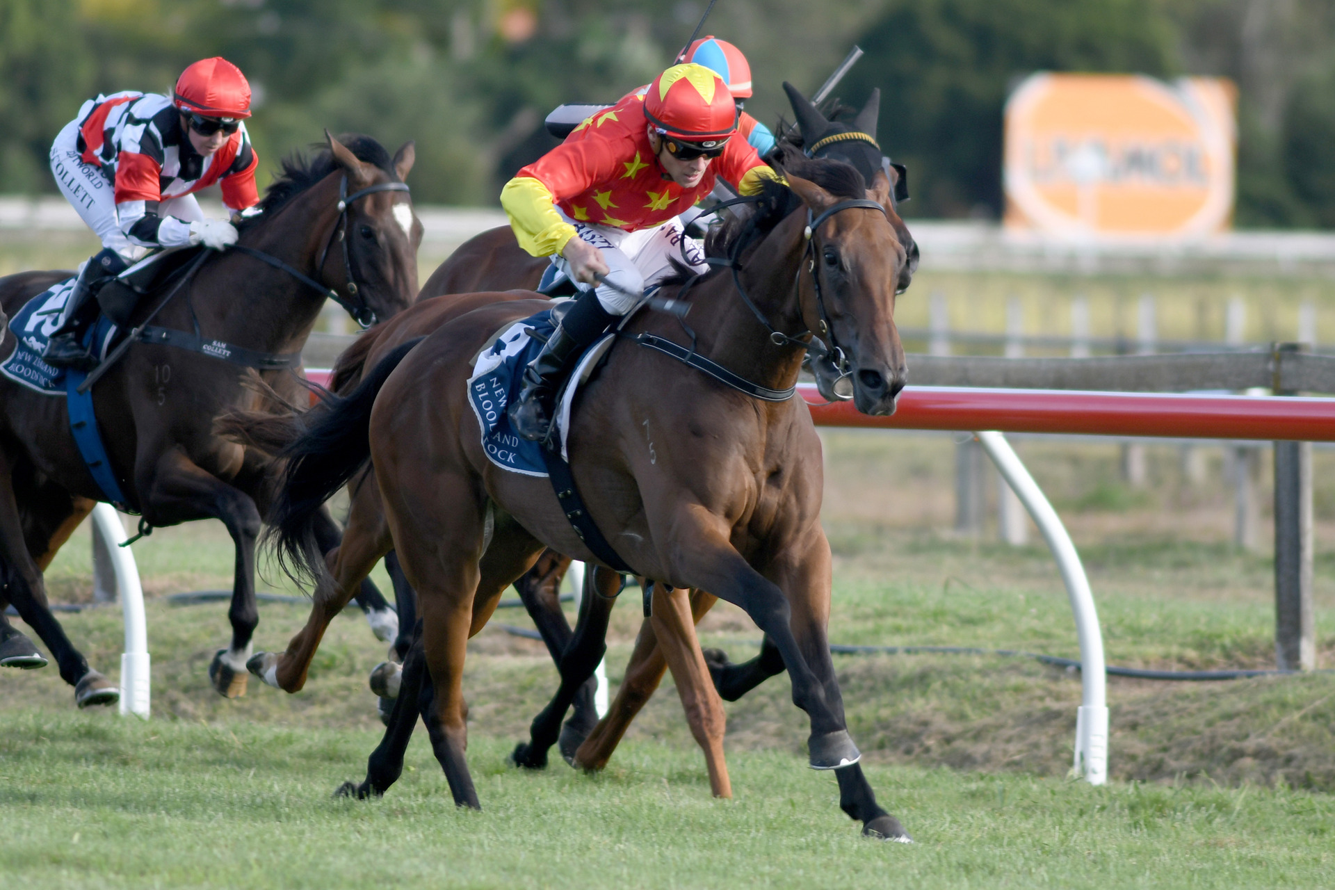 Racing: Oaks test for Baker-Forsman trio