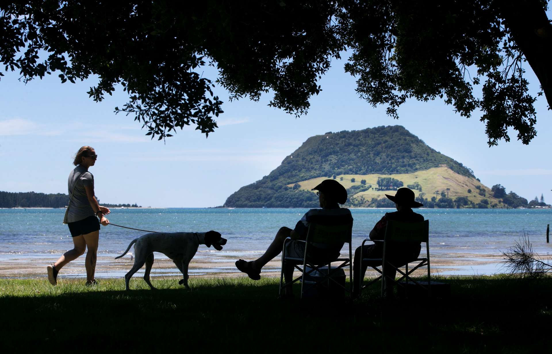 Roll on summer in New Zealand: warmth, humidity here until April