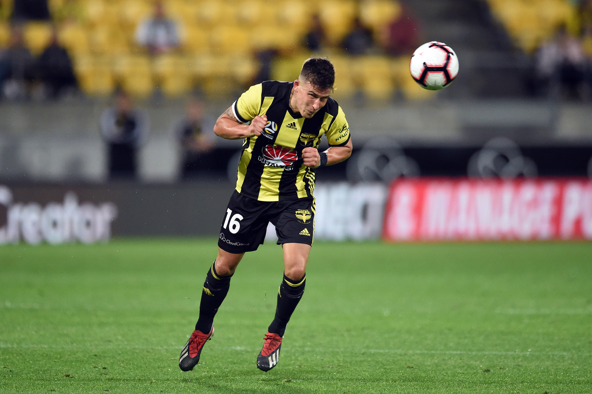The five big questions for Wellington Phoenix this season