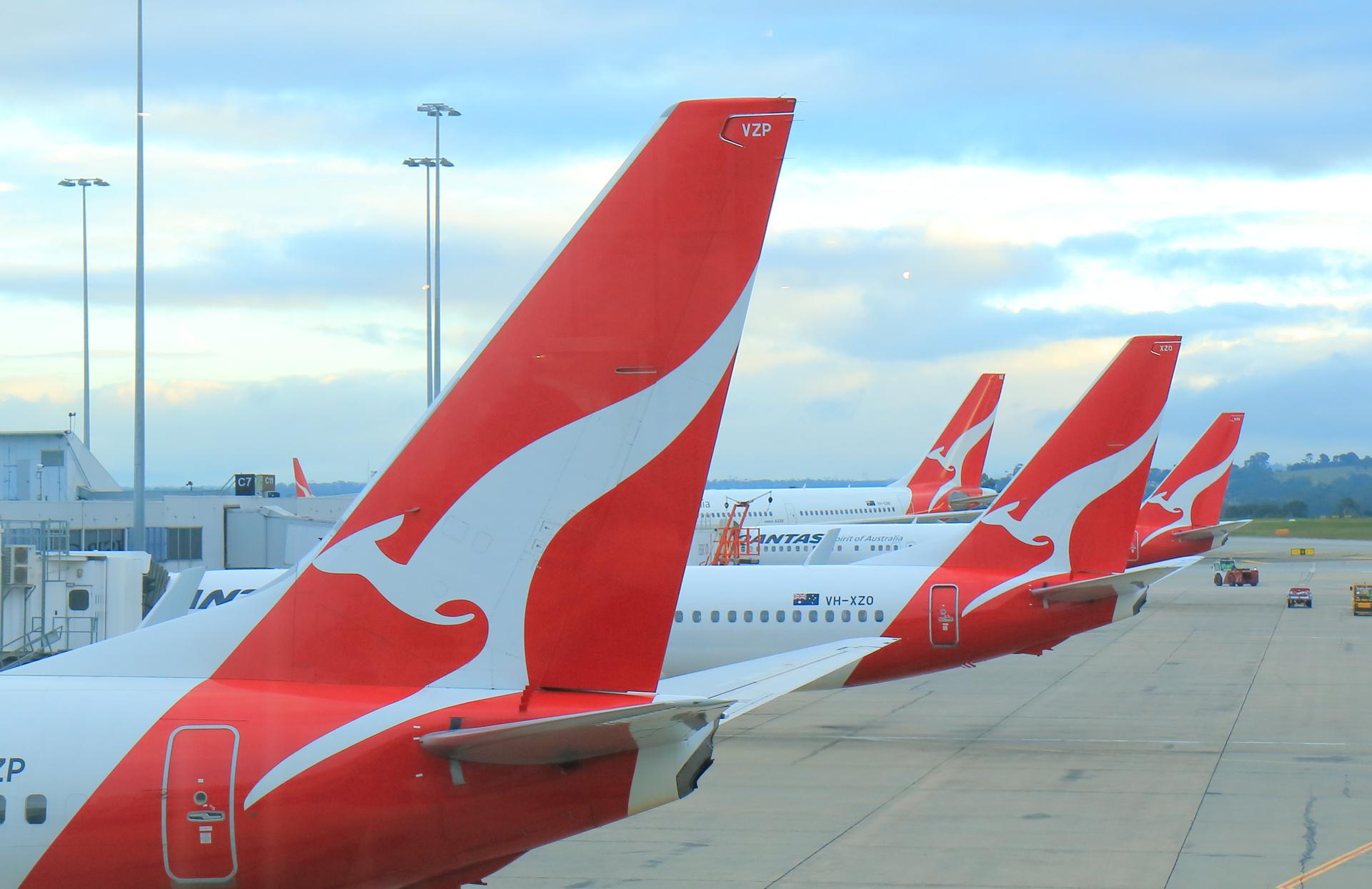 Qantas places temporary ban on snub-nose dog flights