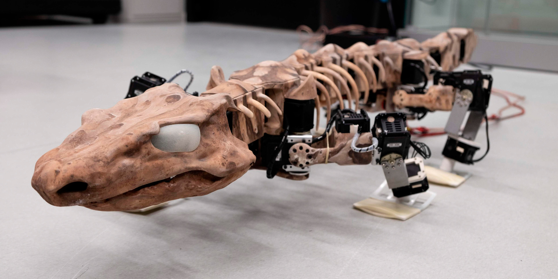 Robot recreates the walk of a 290m-year-old creature which lived before the dinosaurs