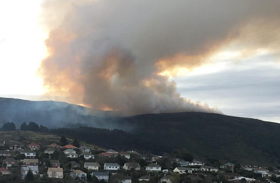 Giant vegetation fire sends plumes of smoke over Dunedin