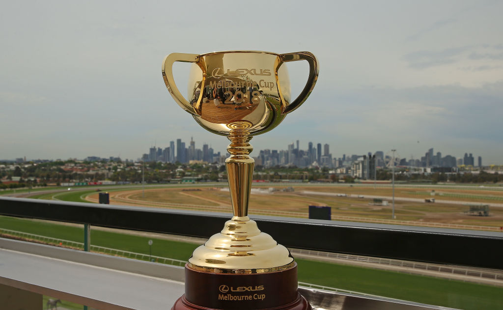 Melbourne cup form guide 2016, horses, field, tips favourites.