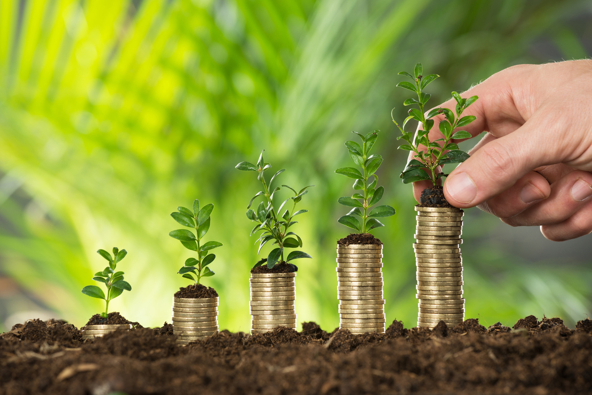 Report calls for institutional investors to help solve social and environmental issues